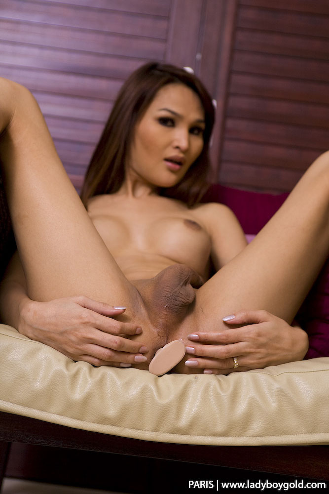 maman poilue ladyboy paris